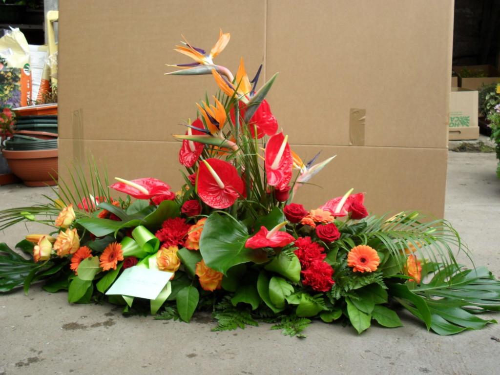 Avenue Des Fleurs Fleuriste De Nouvelles Villes 444