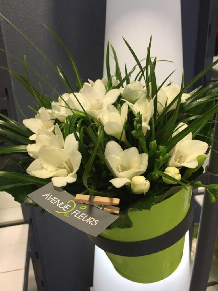 Avenue Des Fleurs Fleuriste De Nouvelles Villes A55
